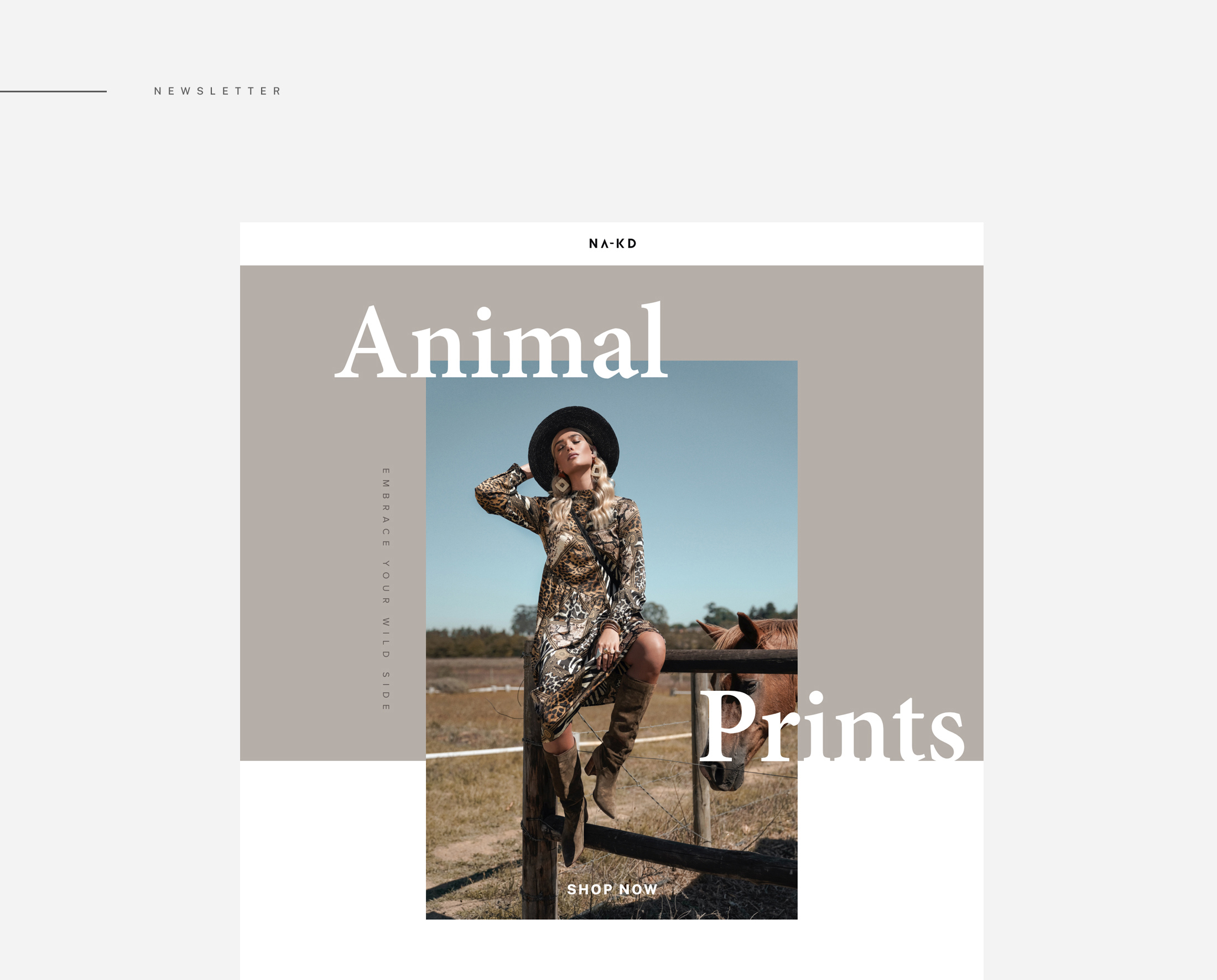 UI Design Newsletter Fashion Campaign Animal Prints