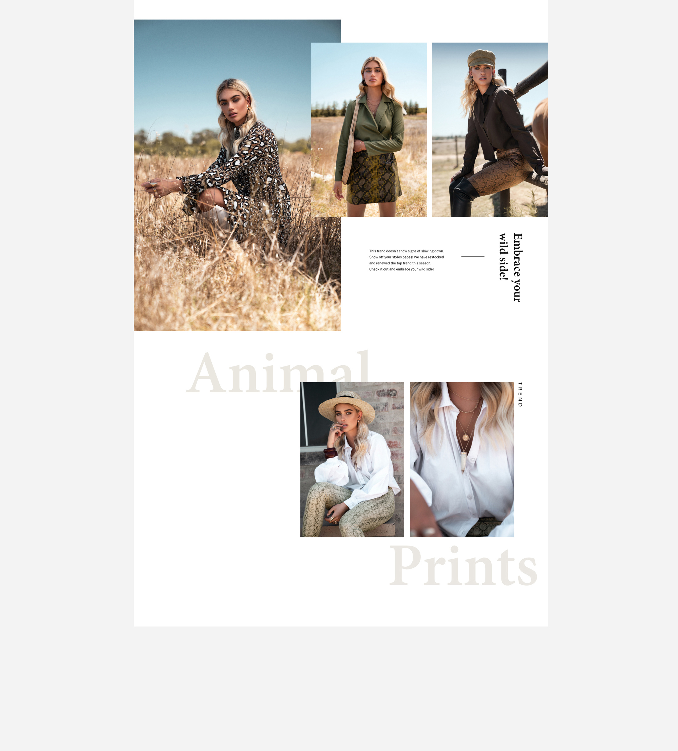 UI Design Newsletter Fashion Campaign Animal Prints Part 2
